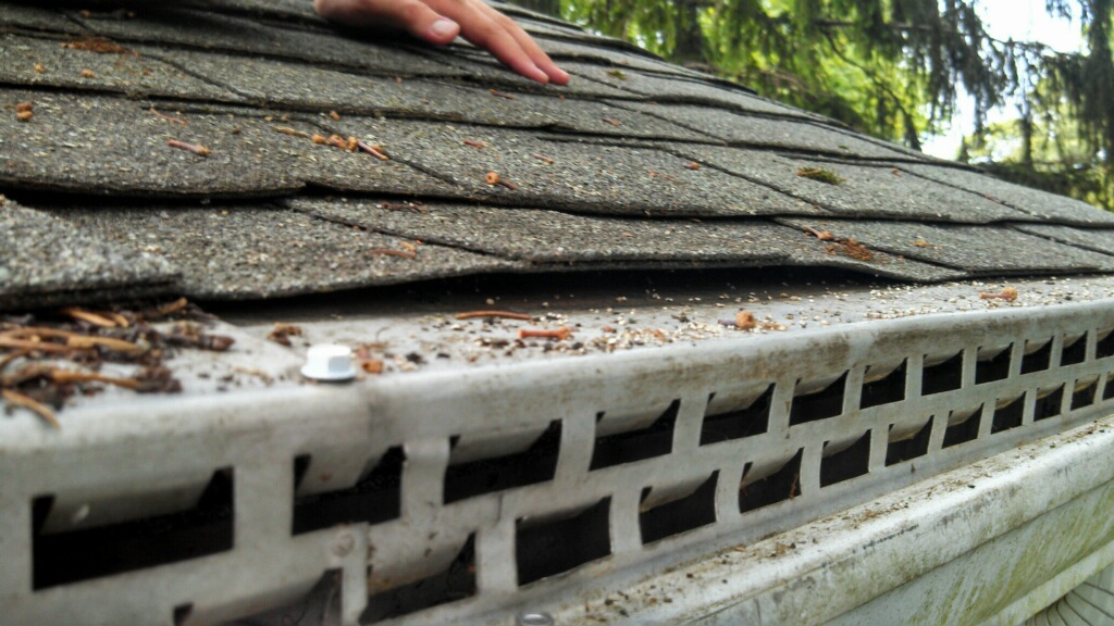 Waterloov The Ultimate Solution To Clogged Gutters